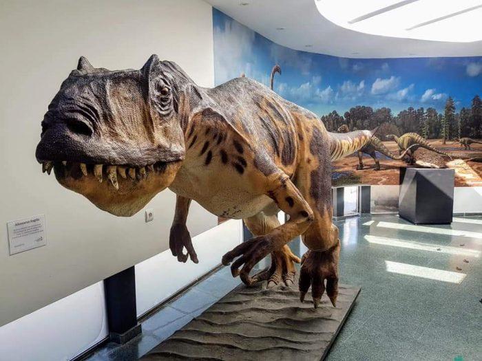 museo dinosaurios Salas de los Infantes PORTADA